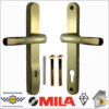 Gold Long Back Plate LL